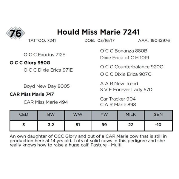 Hould Miss Marie 7241