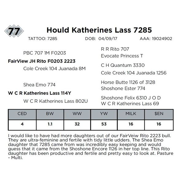 Hould Katherines Lass 7285