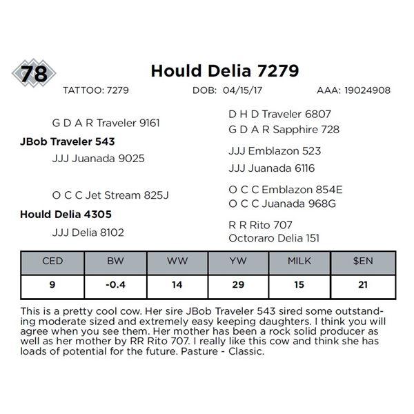 Hould Delia 7279