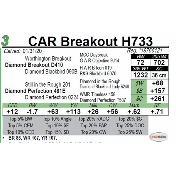 CAR Breakout H733
