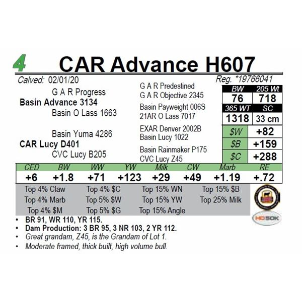 CAR Advance H607