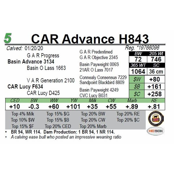 CAR Advance H843