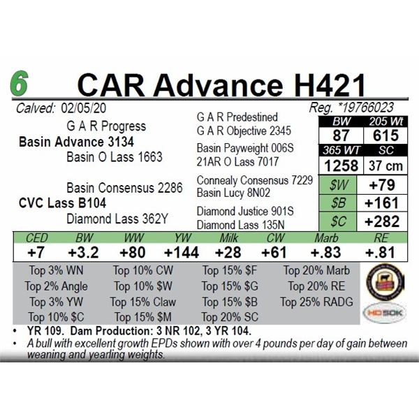CAR Advance H421