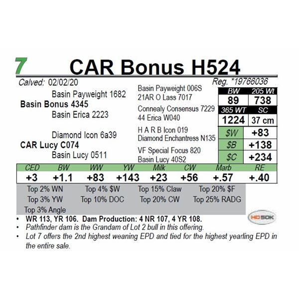 CAR Bonus H524
