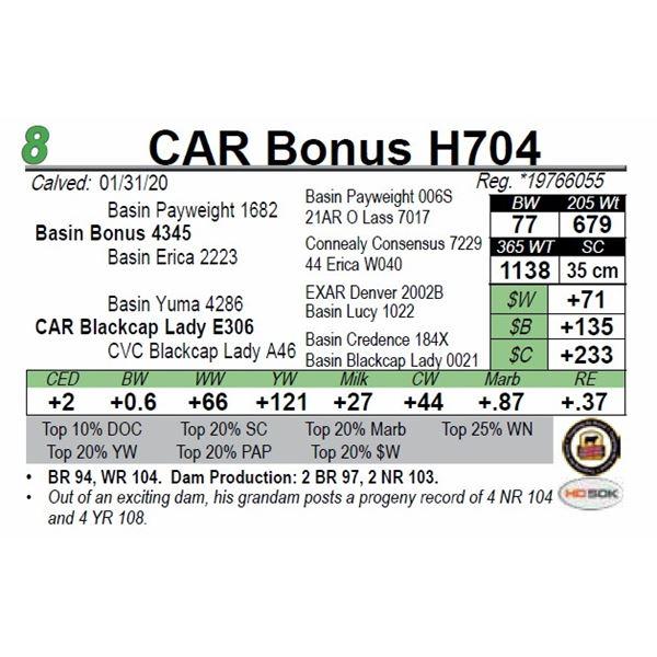 CAR Bonus H704