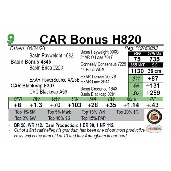 CAR Bonus H820