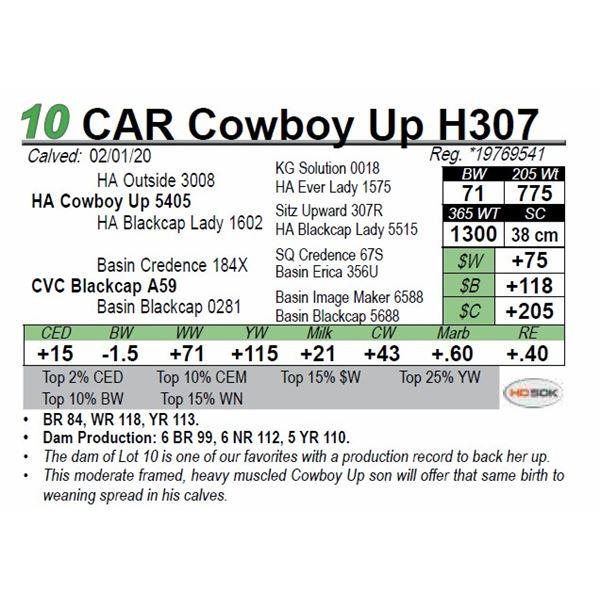 CAR Cowboy Up H307
