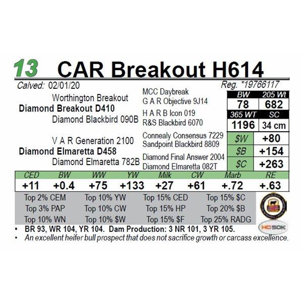 CAR Breakout H614