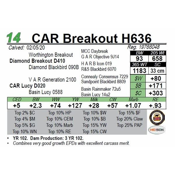 CAR Breakout H636