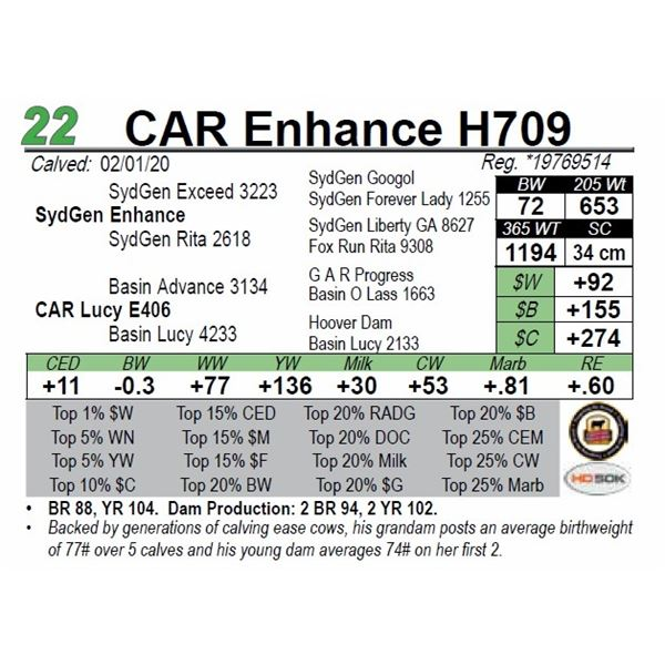 CAR Enhance H709