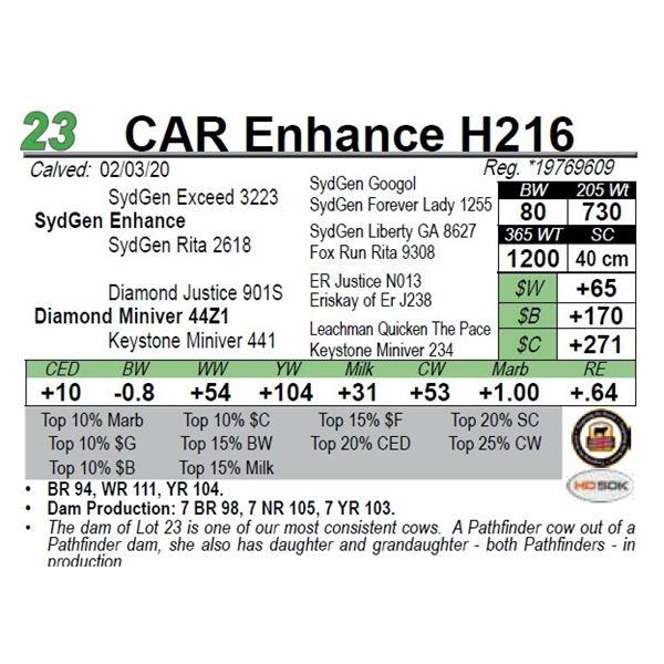 CAR Enhance H216