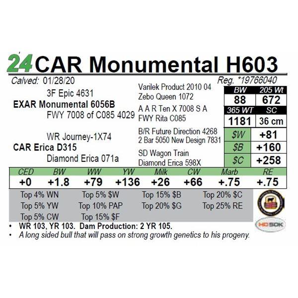 CAR Monumental H603