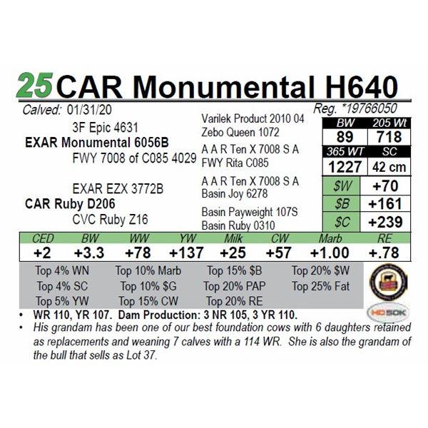 CAR Monumental H640