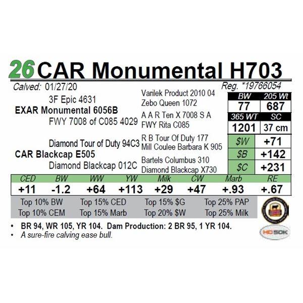 CAR Monumental H703