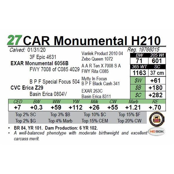 CAR Monumental H210