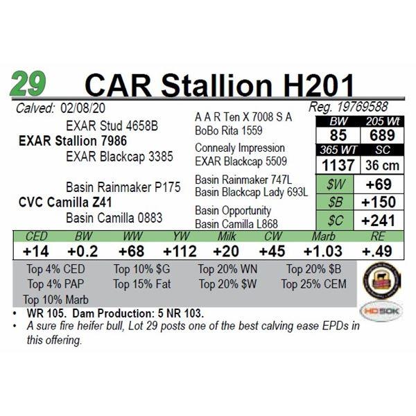 CAR Stallion H201