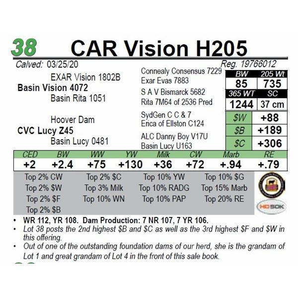CAR Vision H205