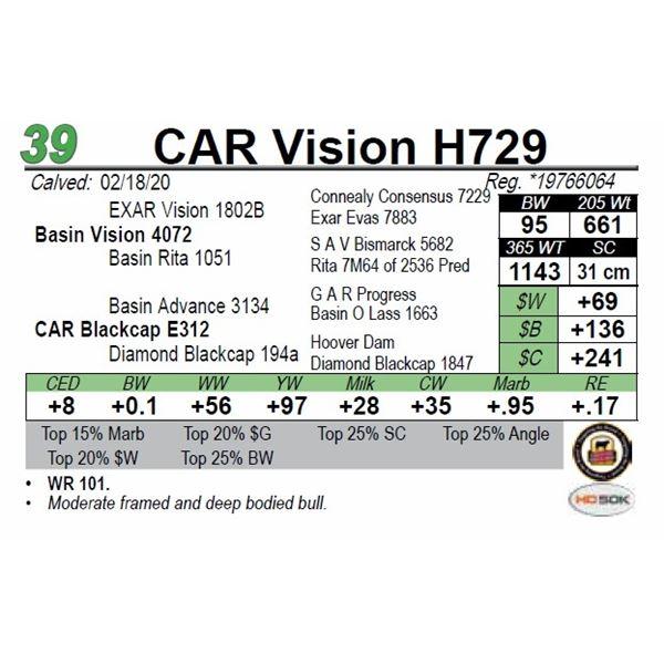 CAR Vision H729