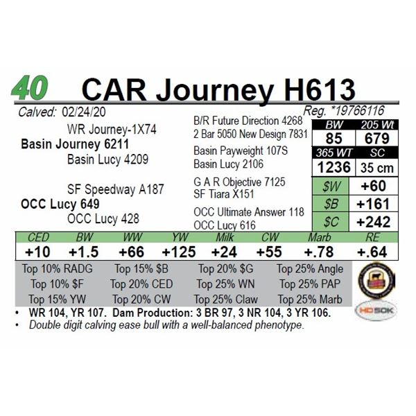CAR Journey H613