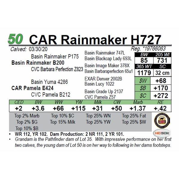 CAR Rainmaker H727