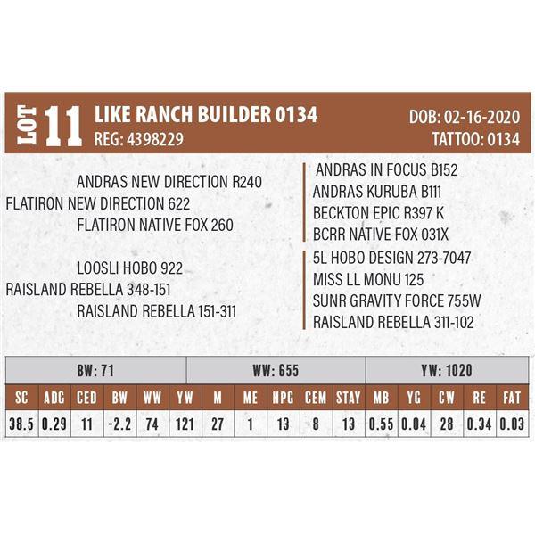 LIKE RANCH BUILDER 0134