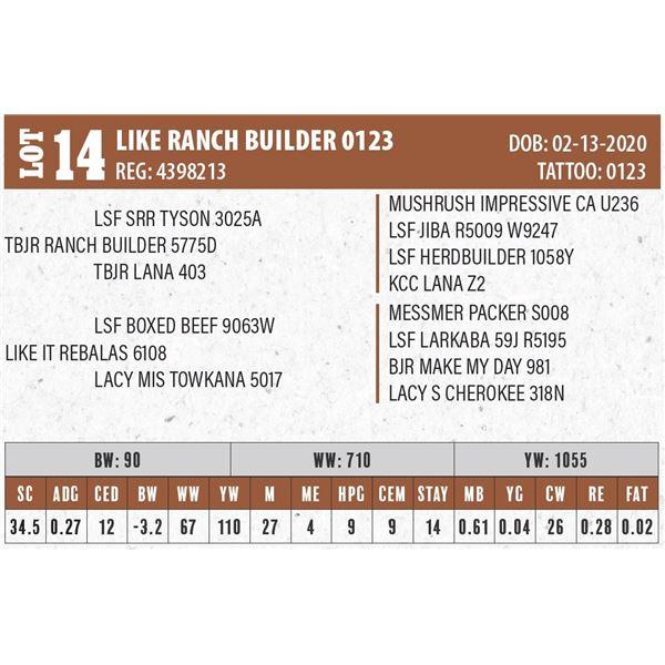 LIKE RANCH BUILDER 0123