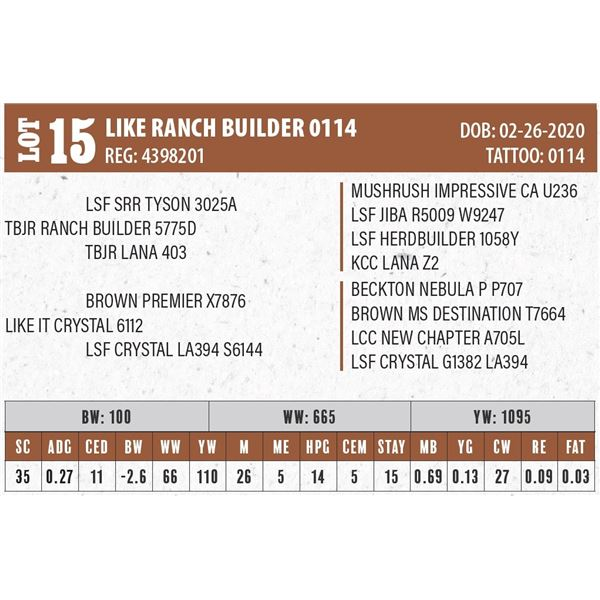 LIKE RANCH BUILDER 0114