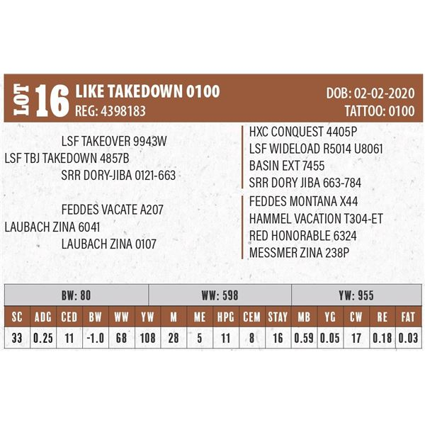 LIKE TAKEDOWN 0100