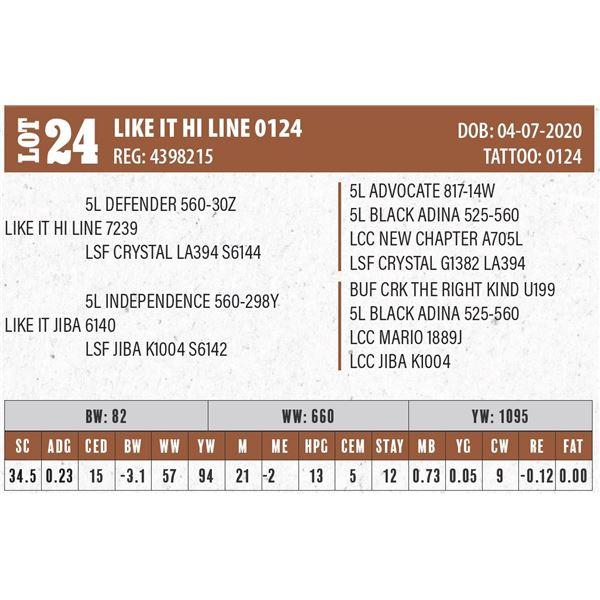 LIKE IT HI LINE 0124