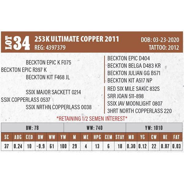 253K ULTIMATE COPPER 2011