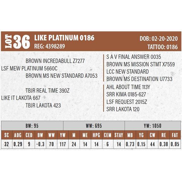 LIKE PLATINUM 0186