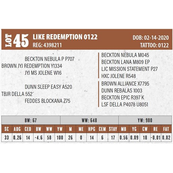 LIKE REDEMPTION 0122