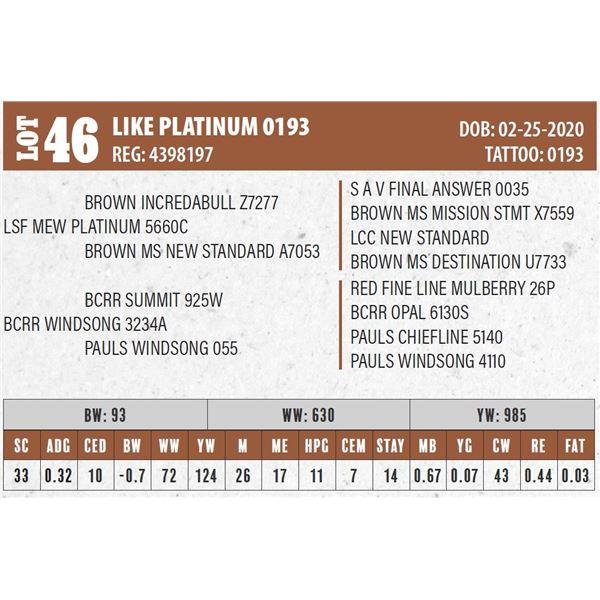 LIKE PLATINUM 0193