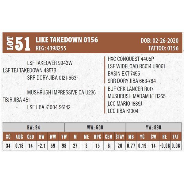 LIKE TAKEDOWN 0156