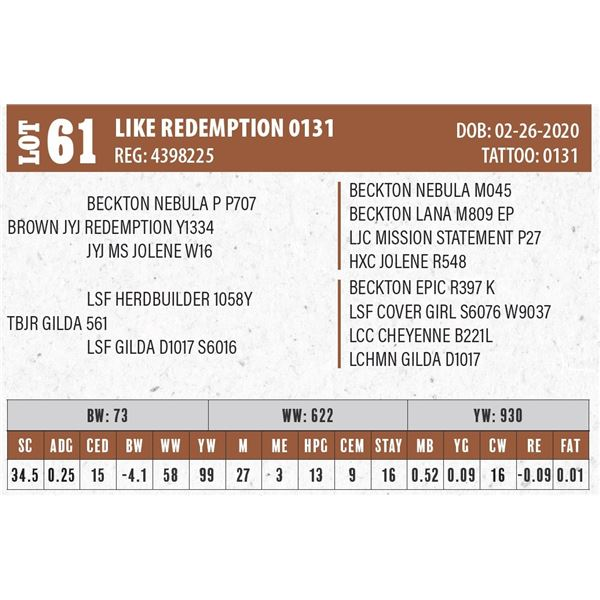 LIKE REDEMPTION 0131