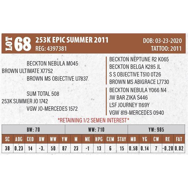 253K EPIC SUMMER 2011