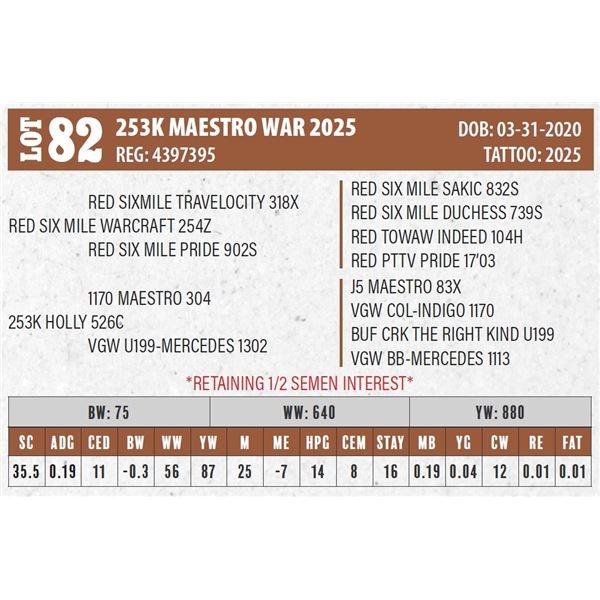 253K MAESTRO WAR 2025