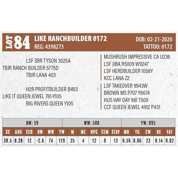 LIKE RANCHBUILDER 0172