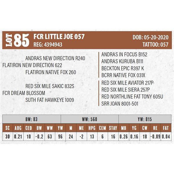 FCR LITTLE JOE 057