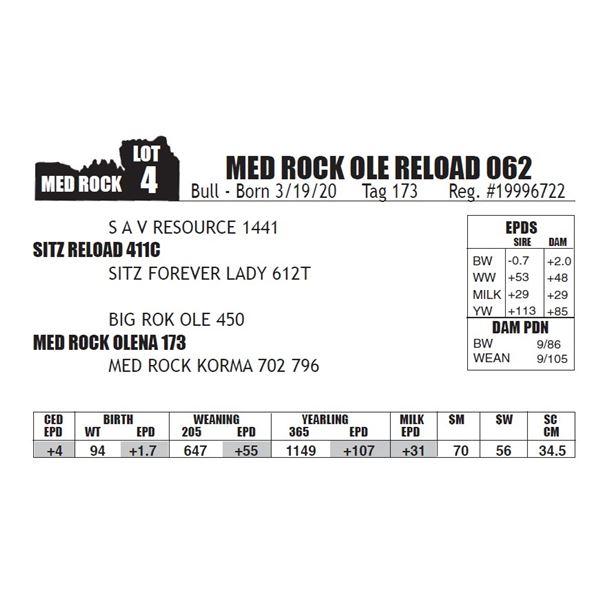 OUT OF SALE - MED ROCK OLE RELOAD 062