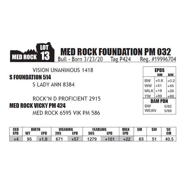 MED ROCK FOUNDATION PM 032