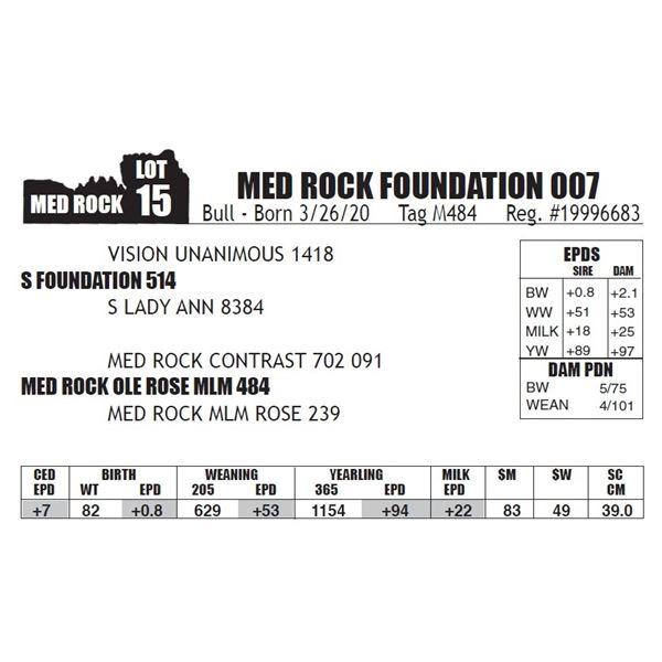 MED ROCK FOUNDATION 007