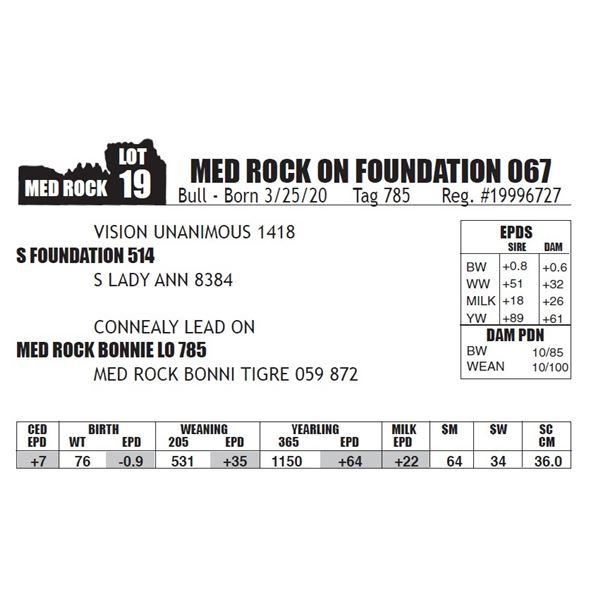 MED ROCK ON FOUNDATION 067