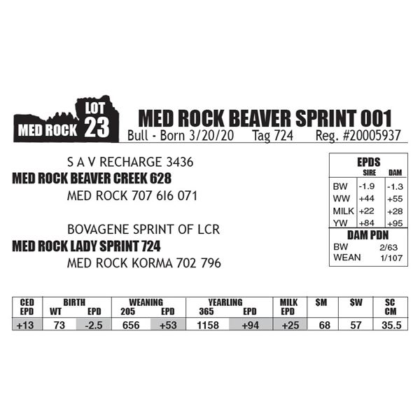 MED ROCK BEAVER SPRINT 001