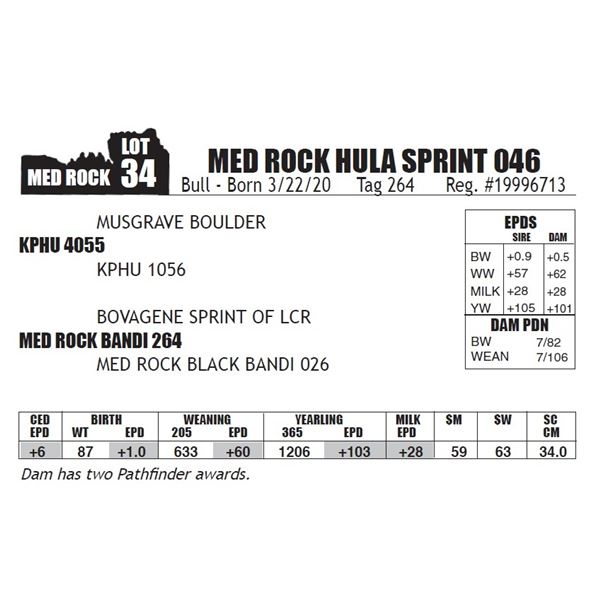 MED ROCK HULA SPRINT 046