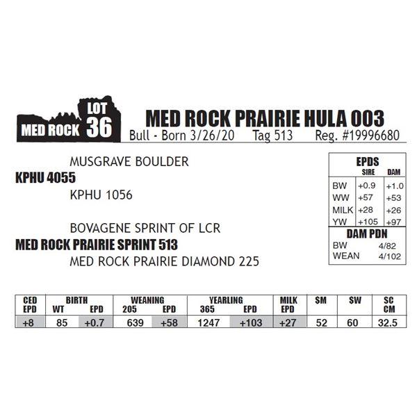 MED ROCK PRAIRIE HULA 003