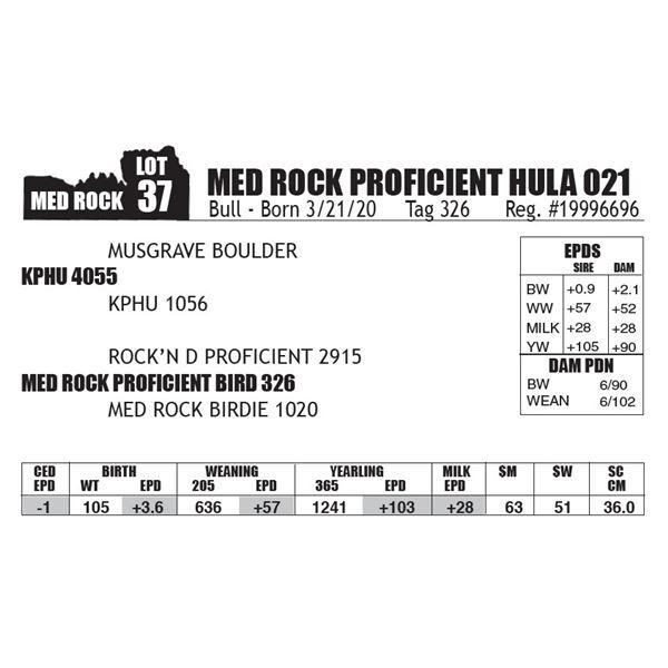 MED ROCK PROFICIENT HULA 021