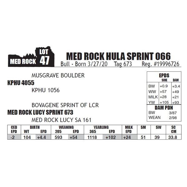 MED ROCK HULA SPRINT 066