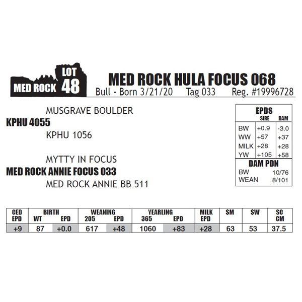 MED ROCK HULA FOCUS 068