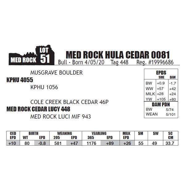 MED ROCK HULA CEDAR 0081